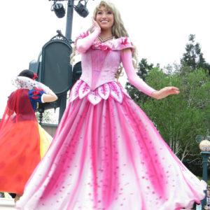 オーロラ姫は美人さんです